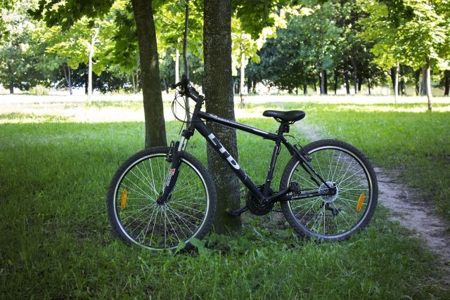 Велосипед LTD Rocco 10