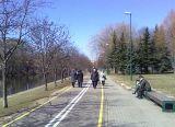 Пешеходы на велодорожке