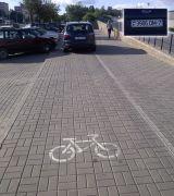 Ford на велодорожке