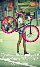 Прокат велосипедов ACTIVE в Витебске